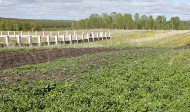 Земли под лпх – Как получить землю для ЛПХ: бесплатно в 2019 году