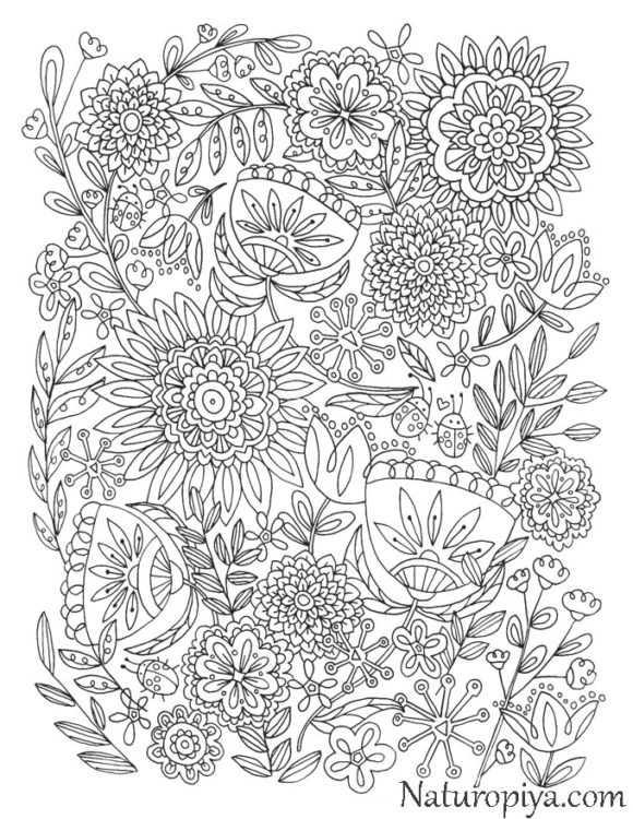 Печать цветы – Раскраски Цветы