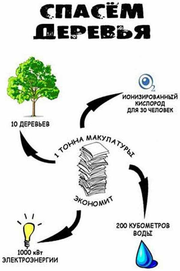 https://deltodom.ru/wp-content/uploads/sbor-makulatury-v-shkole_10.jpg
